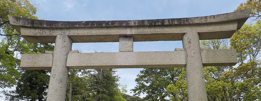 Kamakura hachimangu torii